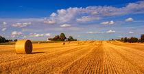 Hay Bales by Keld Bach