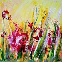 Blumenwiese von Matthias Rehme