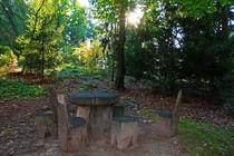 Rastplatz im Wald von Wolfgang Dufner