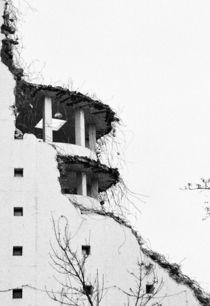 Das bärtige Haus von Johannes Lerch