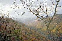 Beautiful Mountain Scenery by skyler
