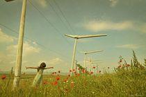 Mohnblumen Traum by Irina Kuneva