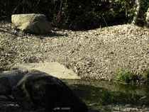 Seeufer von badauarts