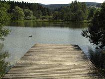 Steg am See mit Ente von badauarts