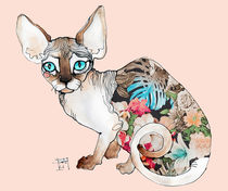 sphinx cat von Sara Ligari