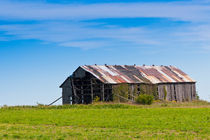Barncountry-5