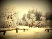 Winter von Elke Balzen