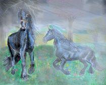 Pferde im Gewitter von Heidi Schmitt-Lermann