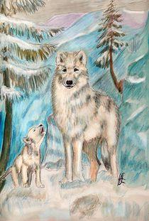 Polarwolf von Heidi Schmitt-Lermann