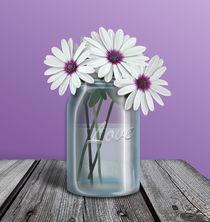 White and Purple Daisy Mason Jar von Amy Sagan