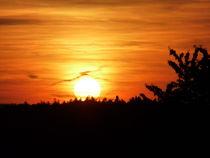 Sonnenuntergang by laubfrosch