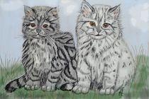 Junge Katzen von Heidi Schmitt-Lermann