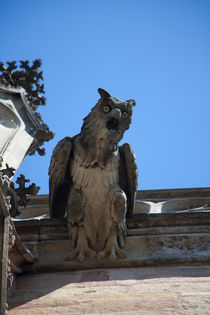 Gargoyle on the Frauenkirche von safaribears