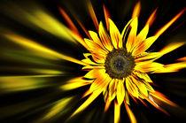 Sonnenstrahlen von Barbara  Keichel