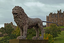 The Alnwick Lion by David Pringle
