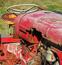 Rusty red tractor by camera-rustica