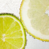 Limette & Zitrone von Sarah Kastner