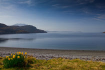 Loch Broom in Bloom von Derek Beattie