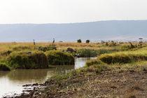 In der Masai Mara von Ralph Patzel
