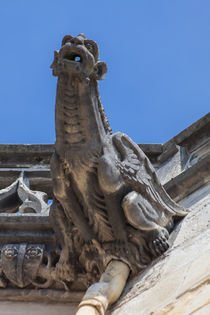 Gargoyle on St.-Cyr-Ste.-Julitte von safaribears