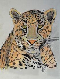 Der Leopard von Heidi Schmitt-Lermann