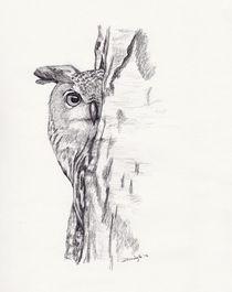 Peeking Owl by Brandy House