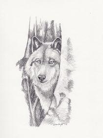 Peeking Wolf von Brandy House