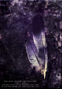 Pierced von Sybille Sterk