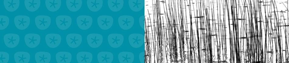 Banner_abstrakt