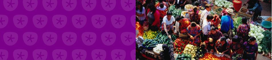 Banner_zentralamerika