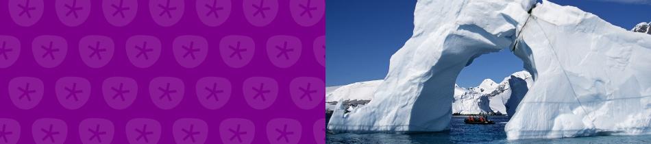 Banner_antarktis