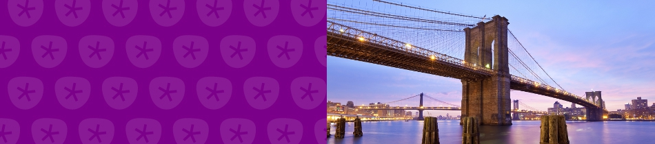 Banner_brooklyn bridge