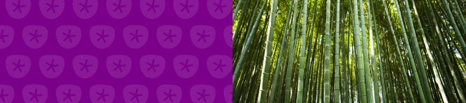 Banner_bambus
