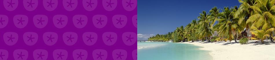 Banner_strandlandschaften