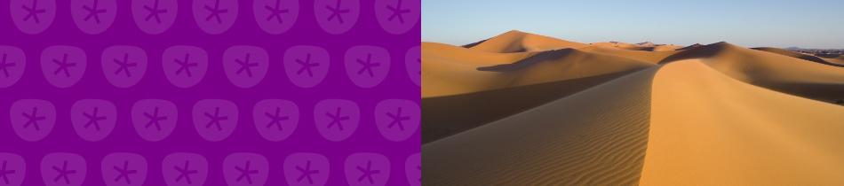 Banner_wüstenlandschaften