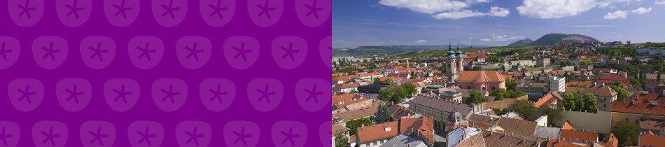 Banner_ungarn