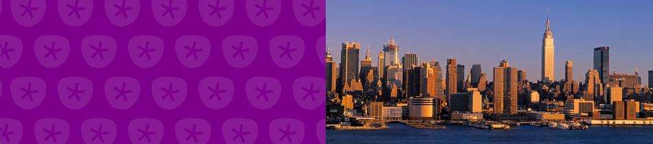 Banner_new_york
