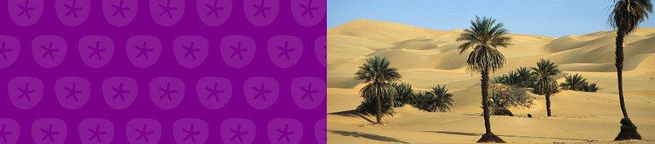 Banner_libyen