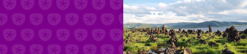Banner_mongolei