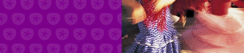 Banner_flamenco