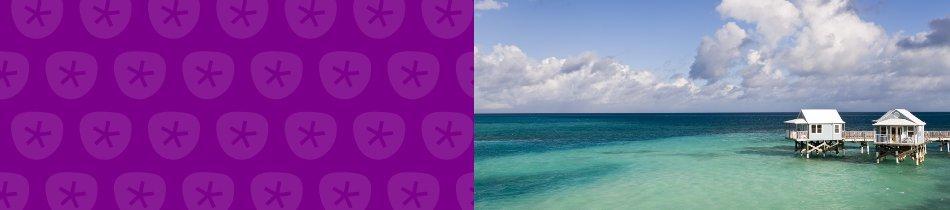 Banner_bermuda