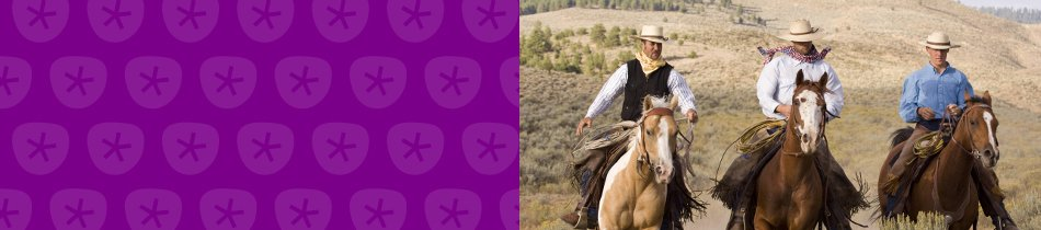 Banner_cowboys