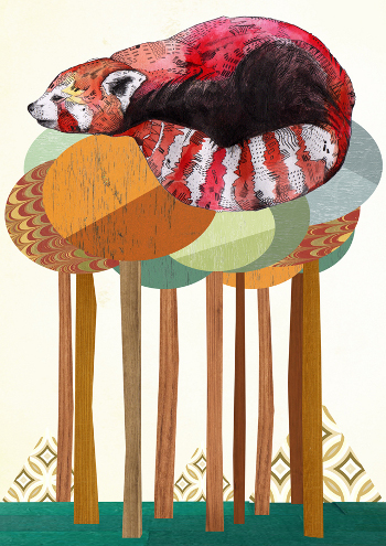 "Sandra Dieckmann ""The Red Panda"""