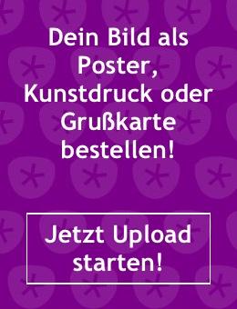 Upload_banner_scraper_de