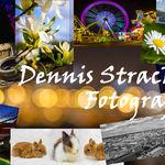 Dennis Stracke